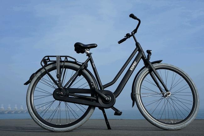 Basic-fiets-01
